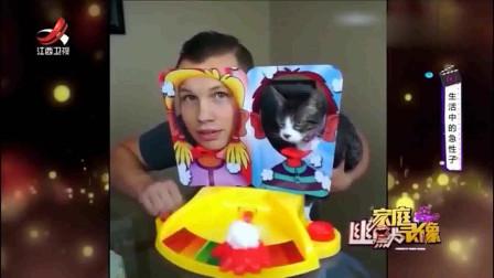 家庭幽默录像:主人和自家的猫玩奶油砸派机,这么欺负你家的猫,你的良心痛吗?