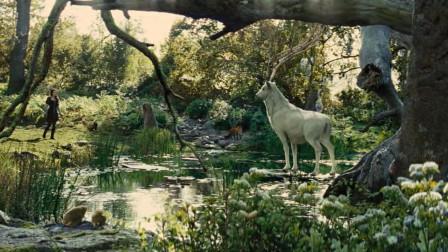 矮人一行在森林处落脚,公主醒来时却发现四周生机勃勃,原来是圣洁白鹿现身了