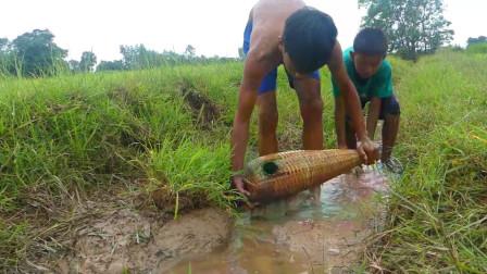 家里没肉吃了,农村男孩田边水渠里放鱼笼,看看他能捕获多少?