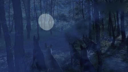 神犬奇兵:众犬在休息,步枪却听到幽灵犬的叫声,仿佛是在召唤它