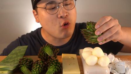 行旅天下 大胃王吃一桌奇葩的食物,芦荟、多肉植物也能吃?