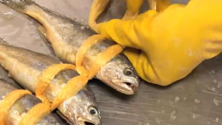 这种鱼已经被世界卫生组织列为第一类致癌物质,还有很多人在吃!