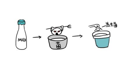 轻知识科普 | 画渣花小烙:酸奶到底是减肥还是增肥