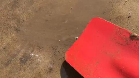 妈妈挖了个大坑,怪兽非常好奇,结果那坑是用来埋怪兽的!