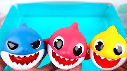 炫彩海洋小动物玩具展示