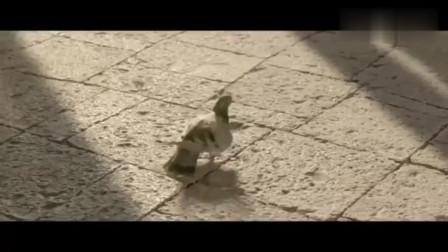 《创意广告》印度神级广告,简直要虐杀泰国广