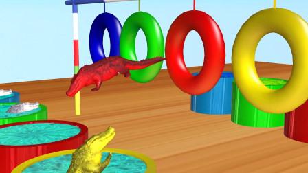 趣味益智动画片 鳄鱼跳游泳圈
