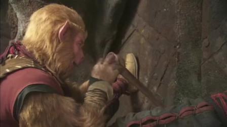 猪八戒只关心自己的发型,却不知猴哥在用他的鼻子刮胡子