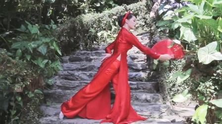 越南农村姑娘穿上奥戴,一曲《琵琶行》舞蹈跳的真的好美