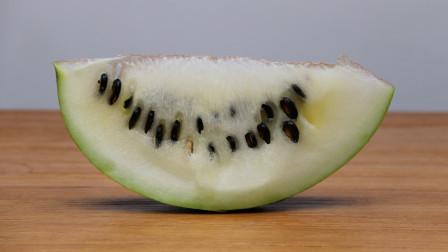 专门用来产西瓜子的籽瓜,里面全部都是瓜子你吃过吗?