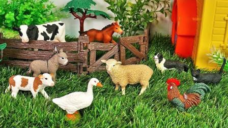 认识农场小动物玩具