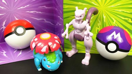 超梦大师球和妙蛙花精灵宝可梦玩具