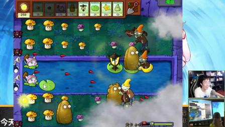 奇怪君植物大战僵尸95版4-8至4-10,植物大战僵尸游戏实况