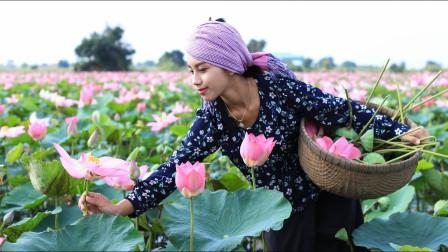 农村巧妇池塘摘新鲜莲子,回家熬莲子羹喝,李子柒都甘拜下风!
