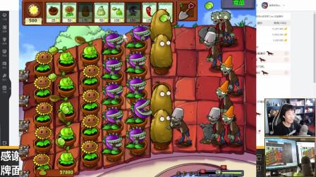 奇怪君植物大战僵尸95版5-1至5-2,植物大战僵尸游戏实况