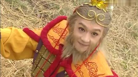 天地争霸美猴王:孙悟空练成新的神功,再一次惊天地泣鬼神,并及时出现救下龟丞相