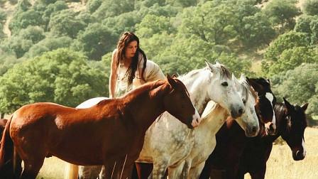 几分钟看完治愈系电影《骏马奥斯温3》米卡带着奥斯温回归野马群