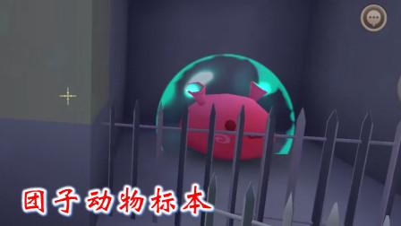 迷你世界联机高级409:我将野生团子关进笼子,作为野生动物标本