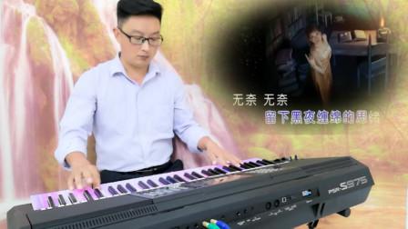 无奈的思绪 电子琴音乐