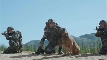 神犬奇兵:郭油子派步枪生擒白峰,只为了替所有人,有心了