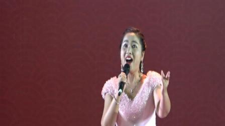 女声独唱《难忘的那一天》 演唱:文杰君    摄制:一片绿叶
