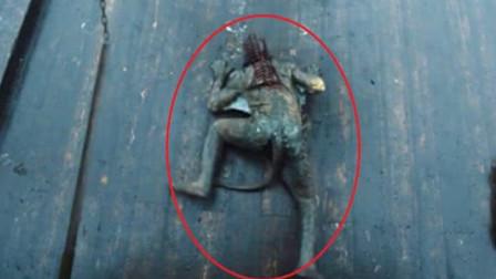 """传说中的""""水猴子""""能将人溺死,现实中真的存在吗?真身惊现头皮发麻!"""