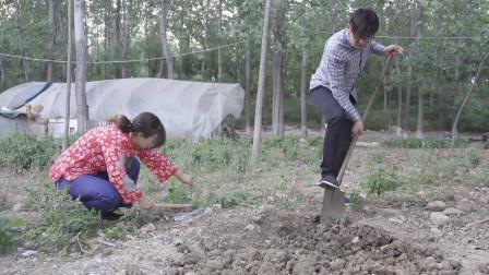 沭阳农村微电影故事片 讲述以前农村人的真实生活(农村故事第二集)