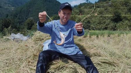 舌尖上的贵州,欢子吃遍稀奇古怪的美食,你能认识多少种