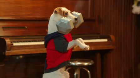 狗狗苦练肌肉,终于打败人类成为了摔跤冠军,一部搞笑动物电影