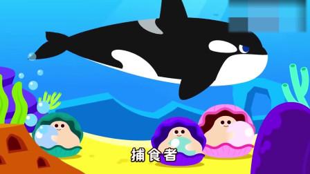 卡通大鲨鱼和虎鲸竞速比赛,来看看谁是海洋老大呢