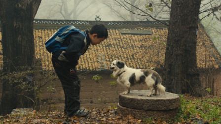 在中国九百万留守儿童野蛮生长他们生活无法想象