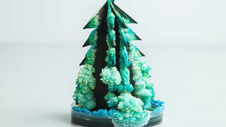 会开雪花的圣诞树,自己动手制作,见证它的成长过程