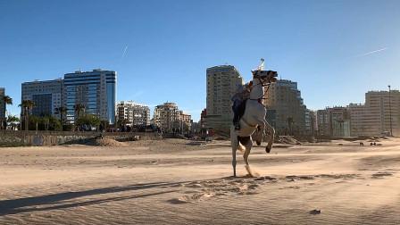 小伍的摩洛哥丹吉尔旅途