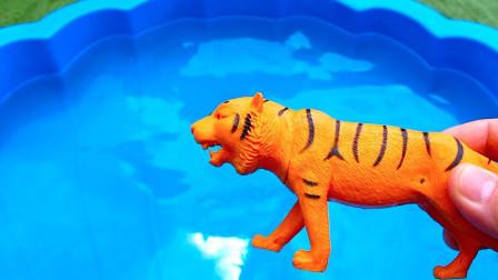 卡通小动物斑马老虎玩具寻找伙伴