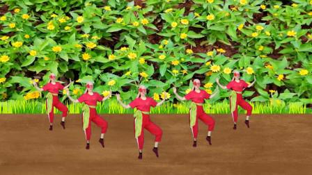 在大自然中吸收新鲜的空气跳舞《站在高高的山岗上》健康又快乐