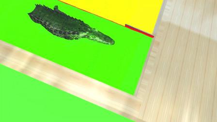 趣味益智动画片 大鳄鱼游过水池变彩色
