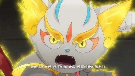 京剧猫:白糖这一招,是准备有去无回,终于靠谱了!
