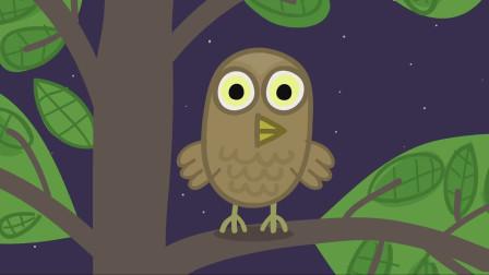 猫头鹰先生站在树梢之上,守卫者寂静的黑夜