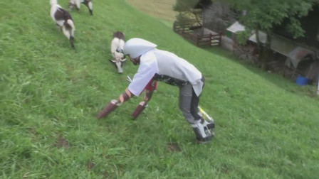 人生如戏,全靠演技!国外男子到山上扮成一只山羊