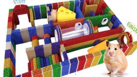 达人用磁球给仓鼠制作了一个有趣的迷宫,小仓鼠出得来吗?