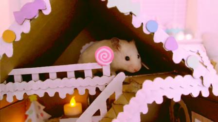 仓鼠系列,精美的鼠宝姜饼屋别墅是怎么做的呢,主人手把手教你