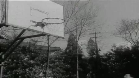 七十年代的国产反特故事片,当年学校包场观看的,非常值得重温!