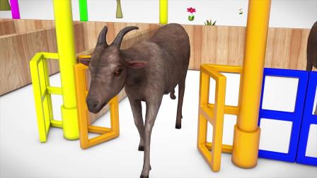 趣味益智动画片 山羊吃草踢水果