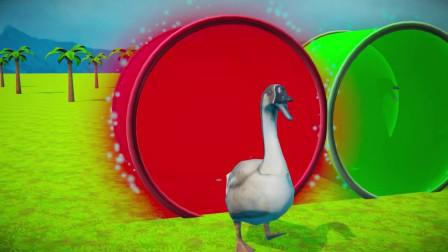 趣味益智动画片 小鸭子变身成大鹅