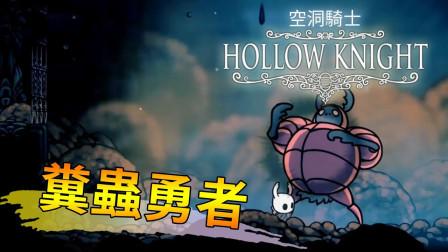 舞秋风 空洞骑士 9 超嗨粪金龟  在大便里打架吧