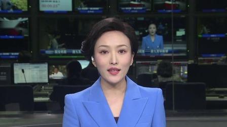 辽宁新闻 2019 国宝档案唐九霄环佩琴 古琴文化承载着盛唐记忆