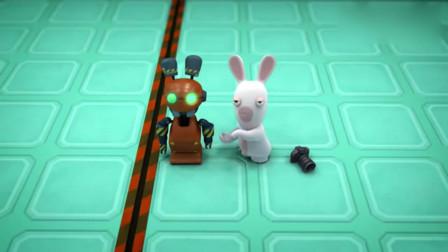 疯狂的兔子:兔子和机器兔同处一室,兔子对它很是好奇