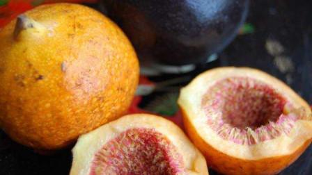中国的专利水果,果肉奇丑少有人见过,但它的名字我不信你没听过