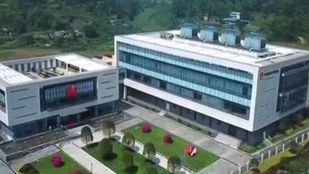 """重庆新闻联播 2019 顶尖企业""""加码""""布局 重庆数字经济崛起"""