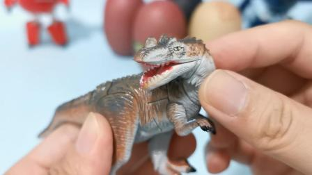 恐龙玩具拼搭之角鼻龙,鼻子上长角的凶猛掠食者